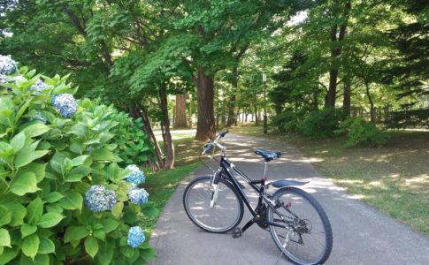 札幌の中島公園の遊歩道と自転車と紫陽花