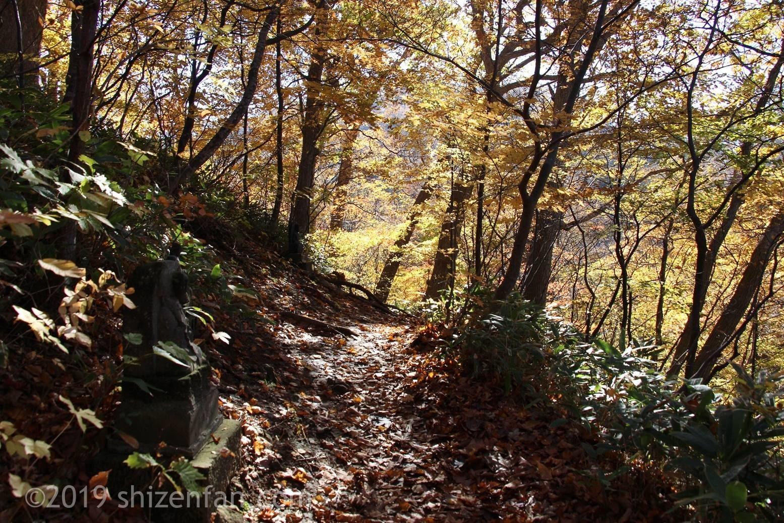 晩秋の札幌円山登山、八十八ヶ所コース登山道