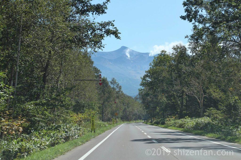 青い池に向かう県道966号線を運転中、正面に見える十勝岳