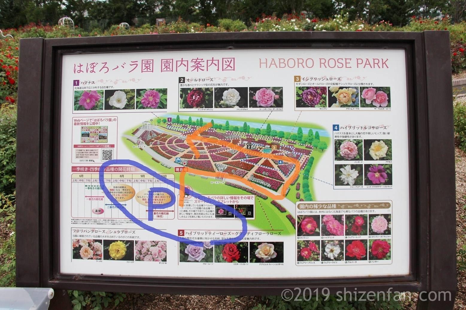 羽幌バラ園、園内案内図