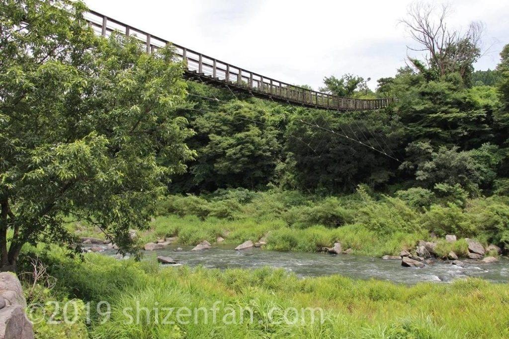 下の遊歩道から見た原尻の滝の吊橋
