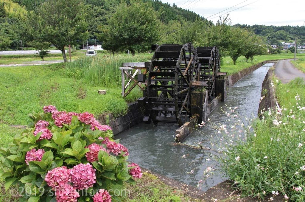 道の駅原尻の滝の向かいにある緒方井路の水車とピンクの紫陽花