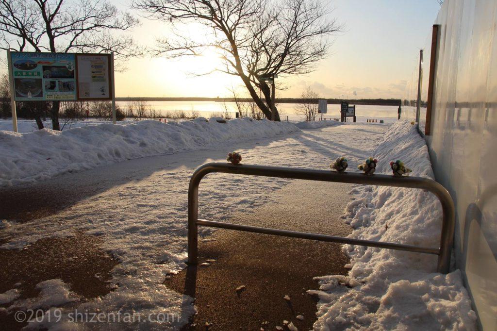 冬の道の駅ウトナイ湖、湖までの歩道と車止め