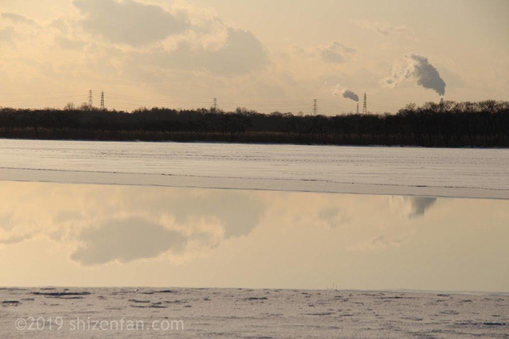 冬の朝のウトナイ湖、湖面に映り込む雲と対岸の林