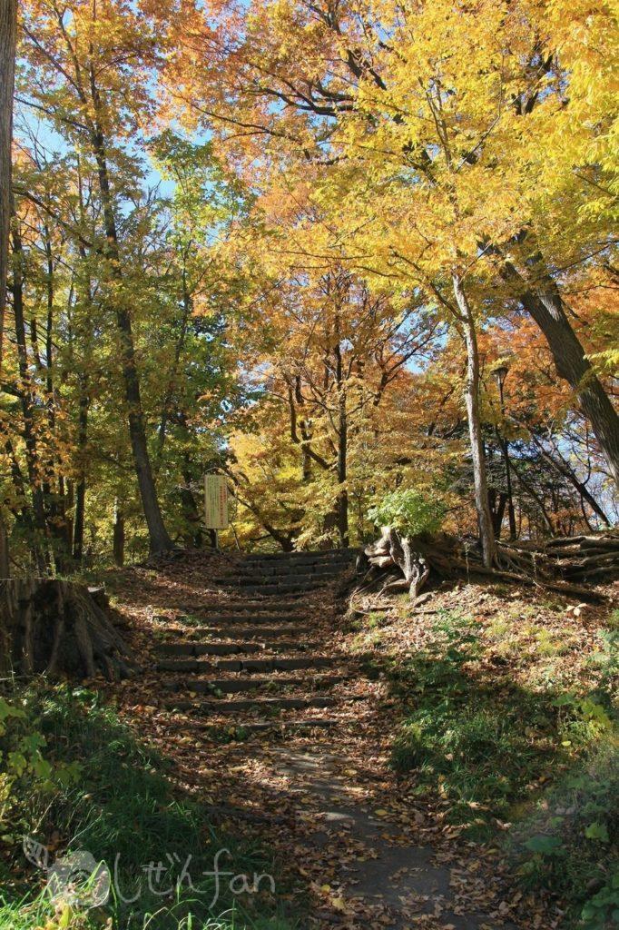 紅葉期の札幌円山公園