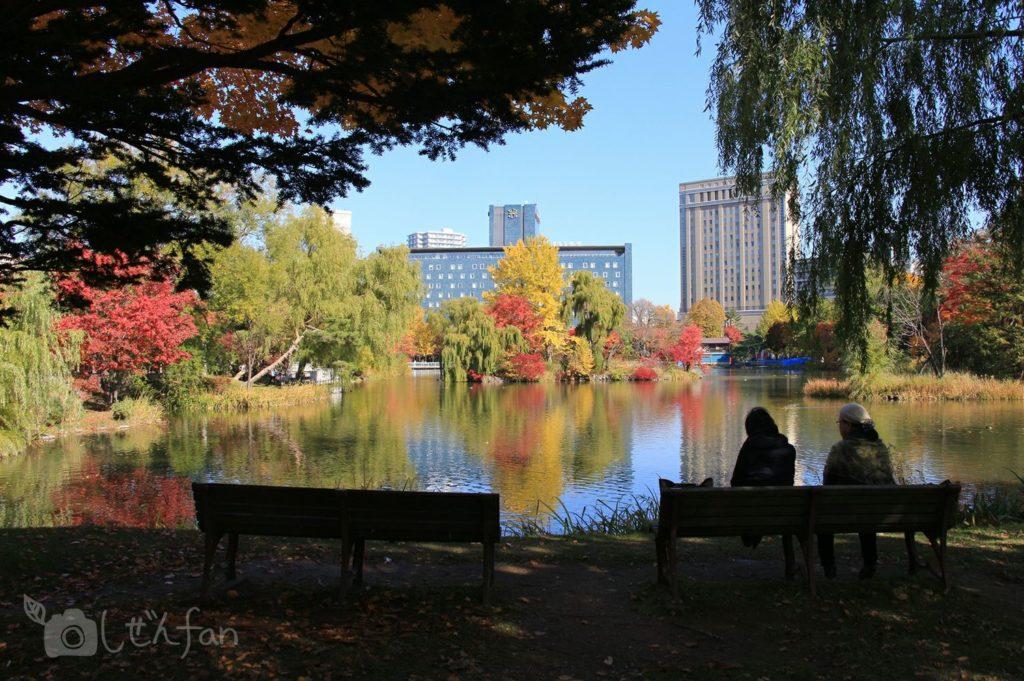 秋の札幌中島公園の菖蒲池とベンチシルエット