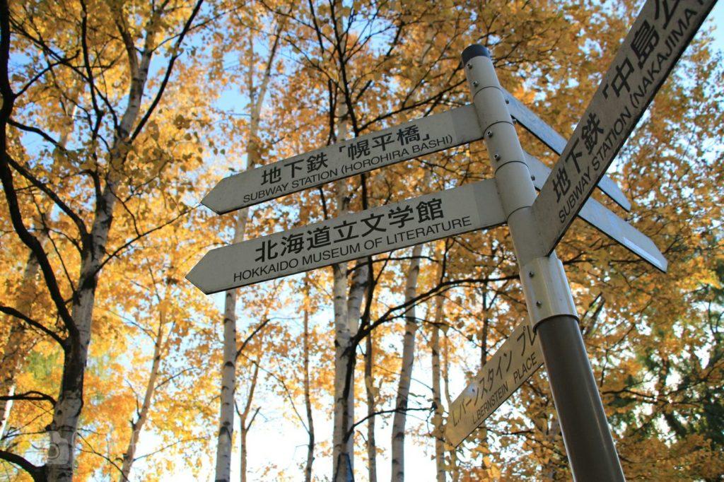 秋の札幌中島公園の道案内ポール、背景に白樺