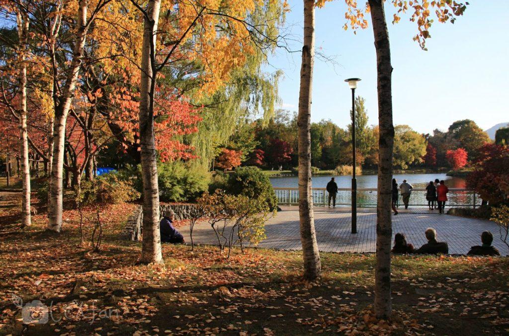 夕暮れの札幌中島公園、菖蒲池付近