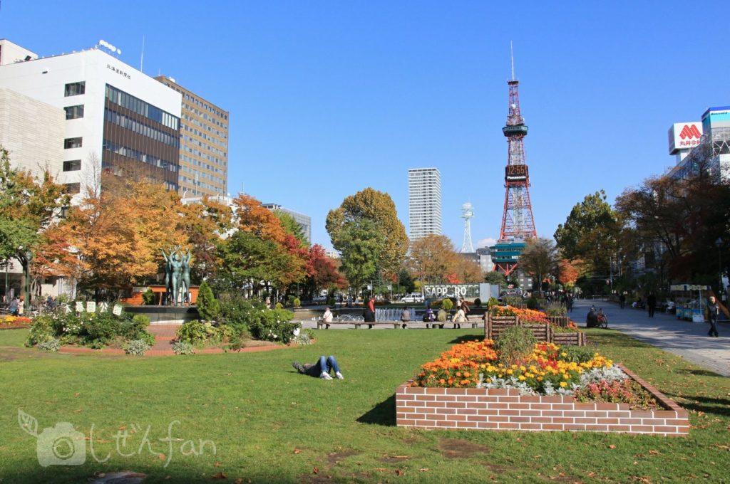 秋の札幌大通公園と花壇とテレビ塔