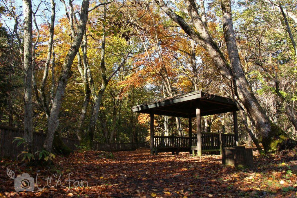 秋の恵庭渓谷、白扇の滝付近の東屋