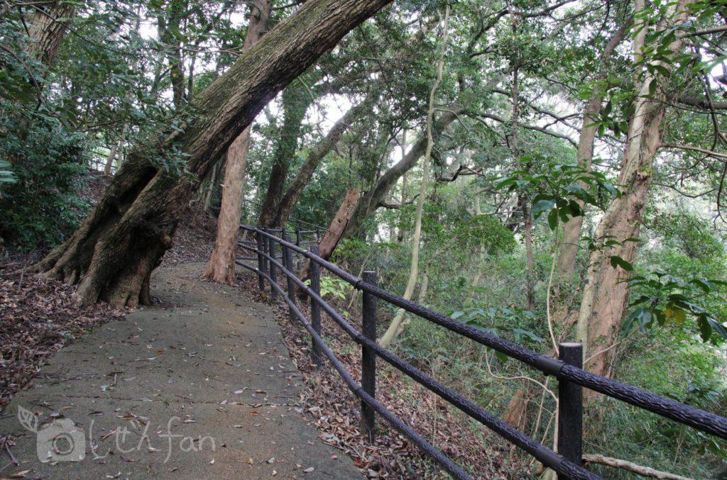 福岡西公園 東側駐車場から展望台広場への遊歩道