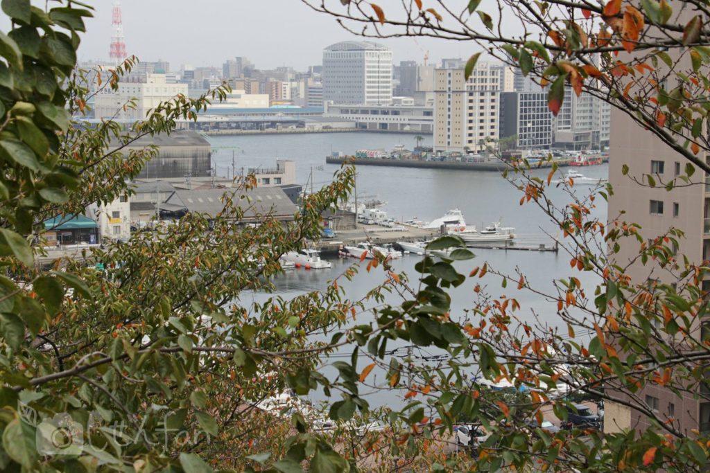 福岡西公園 東側展望台からの眺め