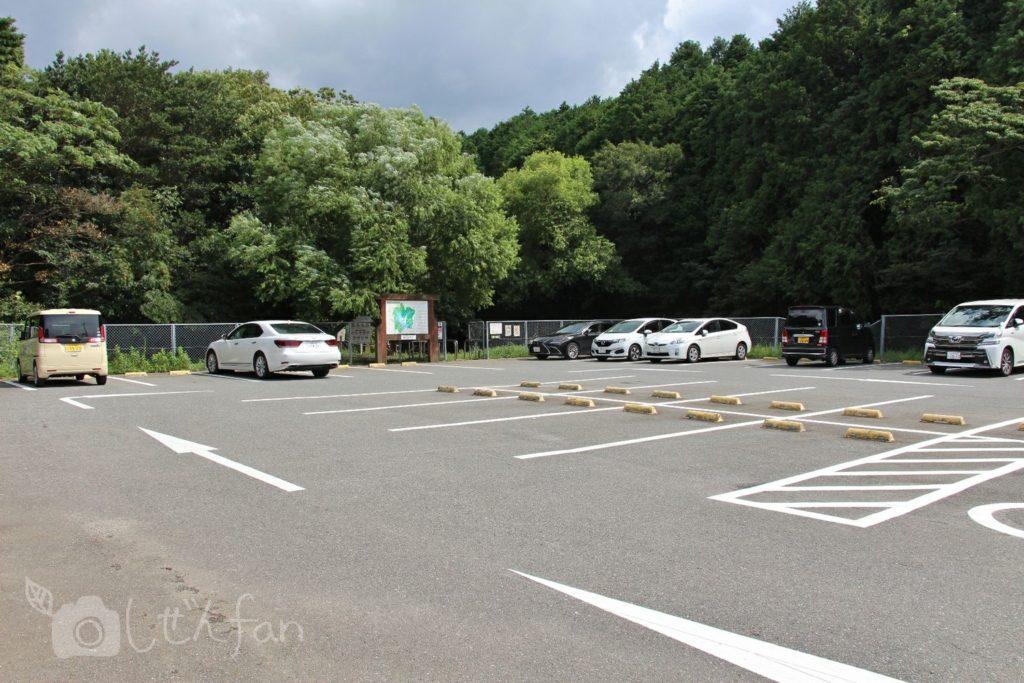 篠栗九大の森、南駐車場の様子