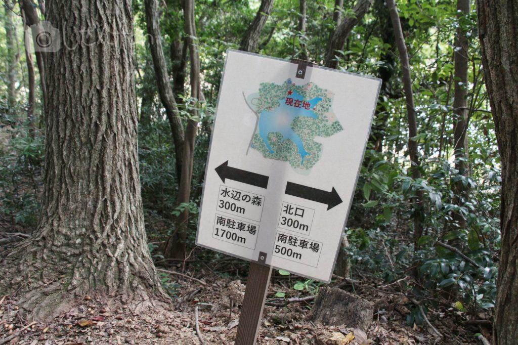 2019.10.6 篠栗九大の森 水辺の森への順路案内