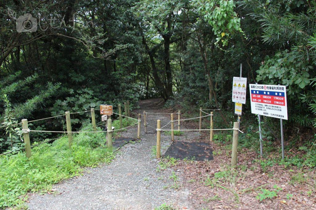 篠栗九大の森の北駐車場入口の様子