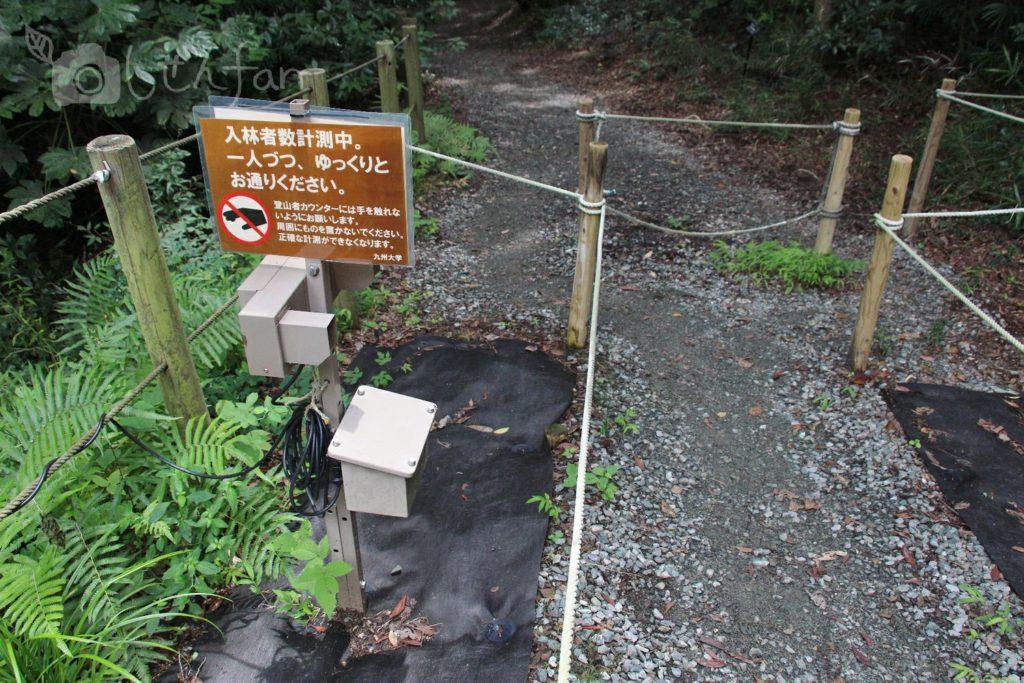 篠栗九大の森の北駐車場入口、計測器
