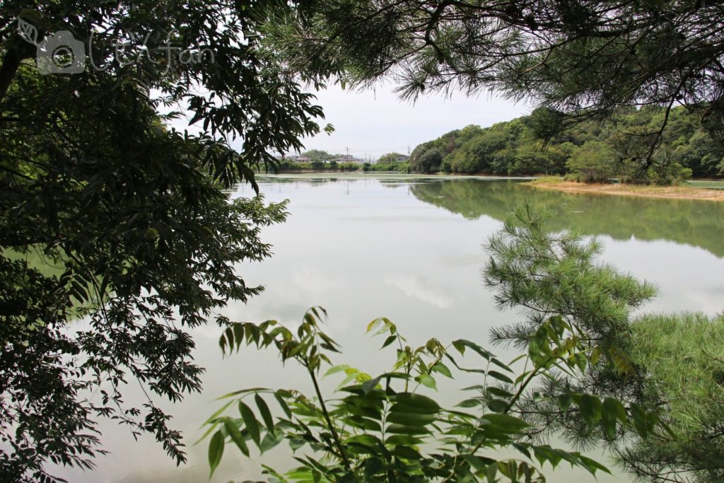 篠栗九大の森、水辺の森近くのあずまやからの景色