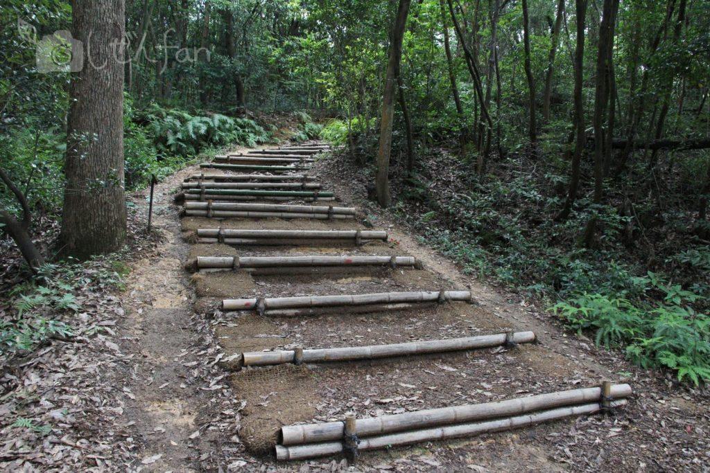 篠栗九大の森の遊歩道にある竹の階段