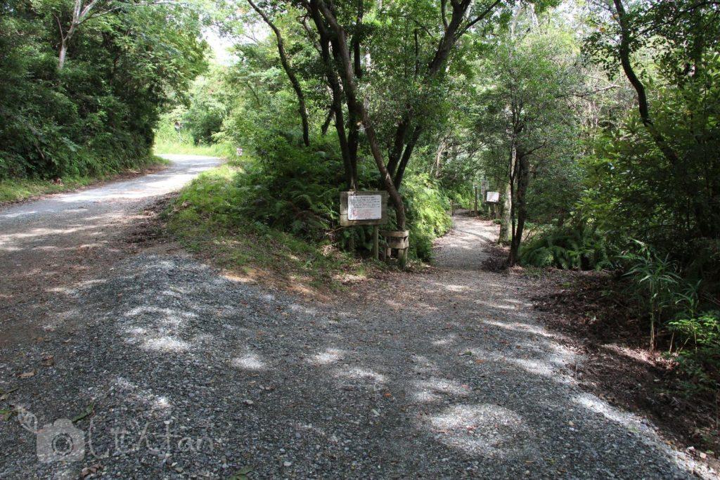 篠栗九大の森北口、遊歩道と駐車場の分岐点
