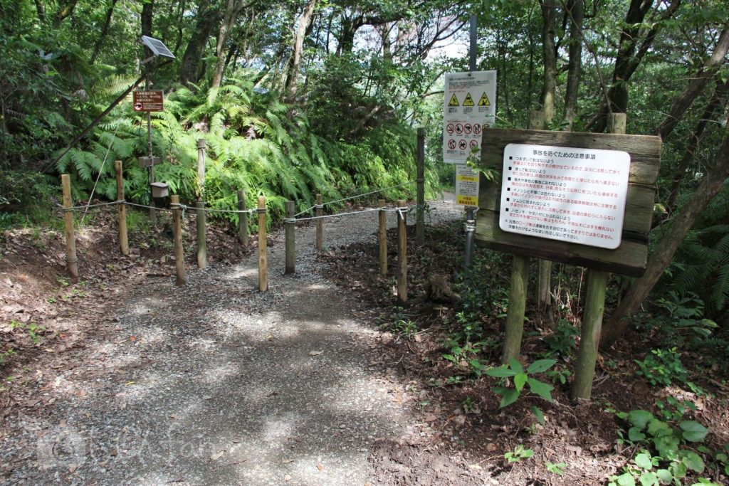 篠栗九大の森、北口付近の遊歩道入口