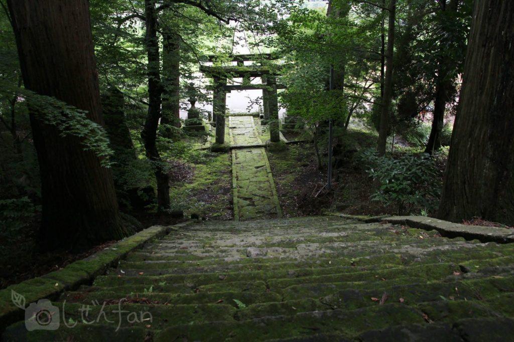 緒方二宮八幡社の階段上から鳥居を見下したイメージ写真