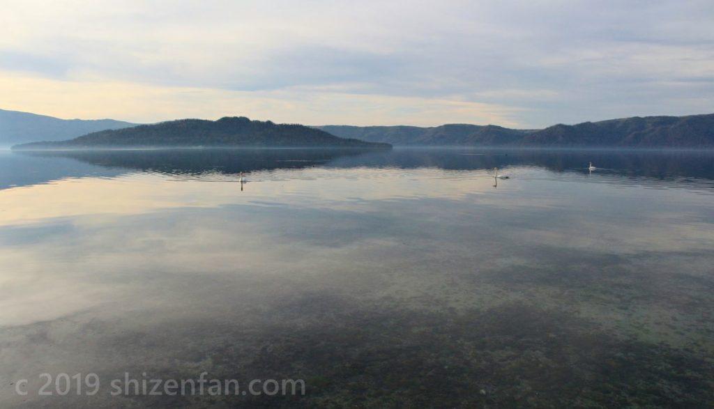 11月5日の屈斜路湖と白鳥