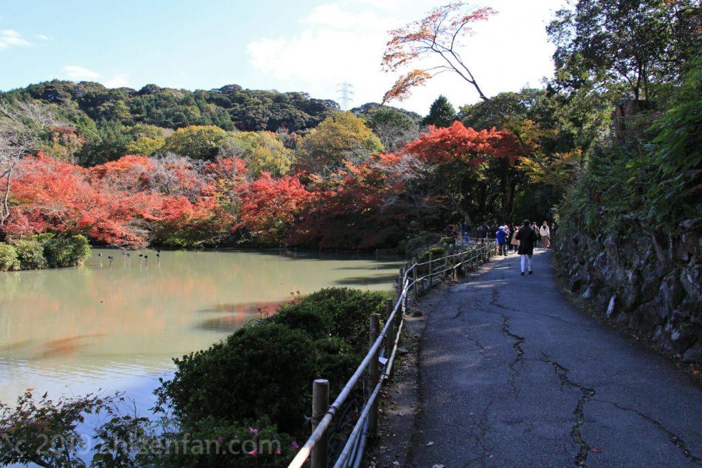 秋の武雄・御船山楽園、池沿いの道