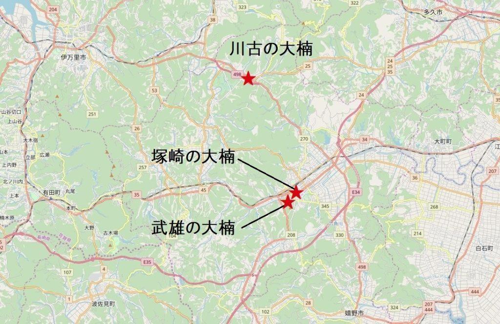 佐賀武雄・大楠の位置