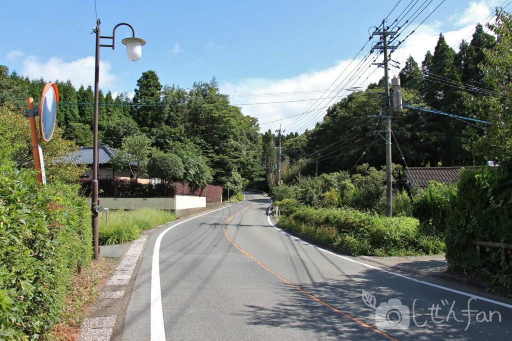 南阿蘇村の道路