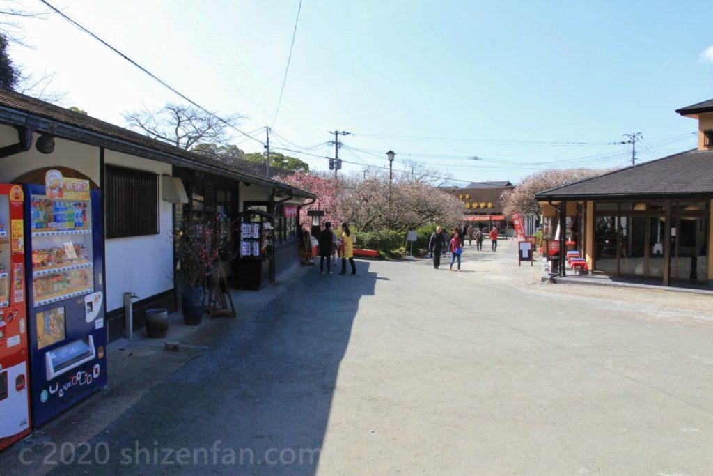 太宰府天満宮・梅園に立ち並ぶ茶店