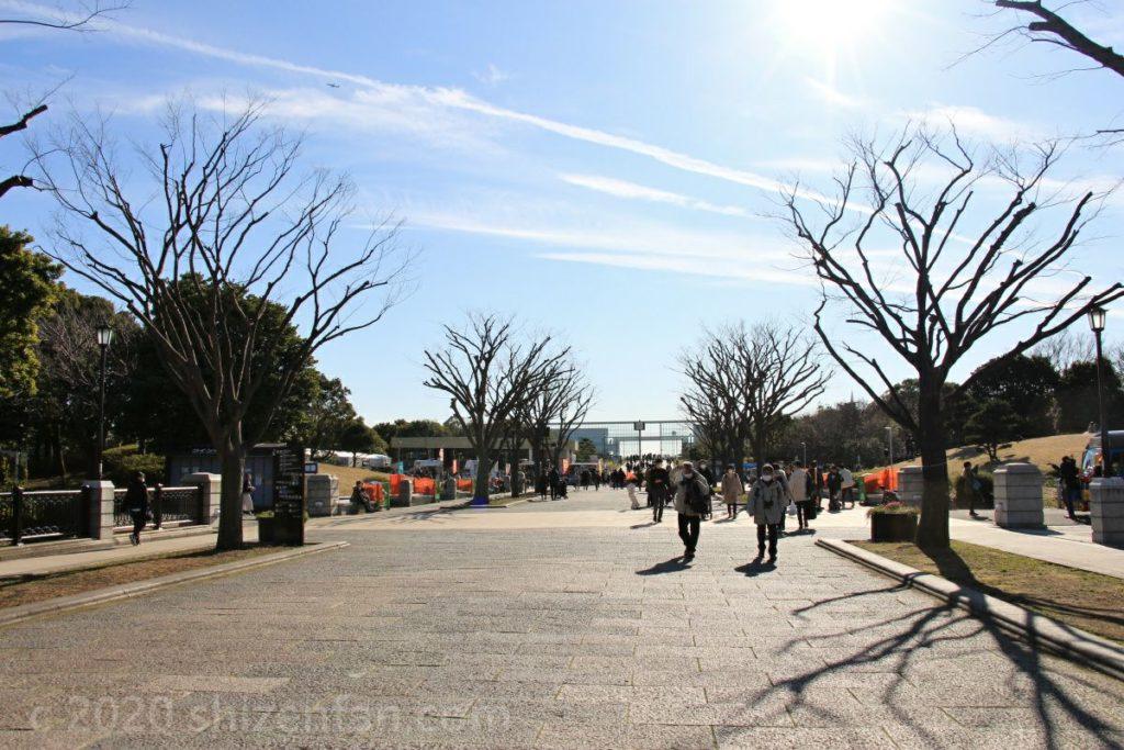 葛西臨海公園・中央園路の様子