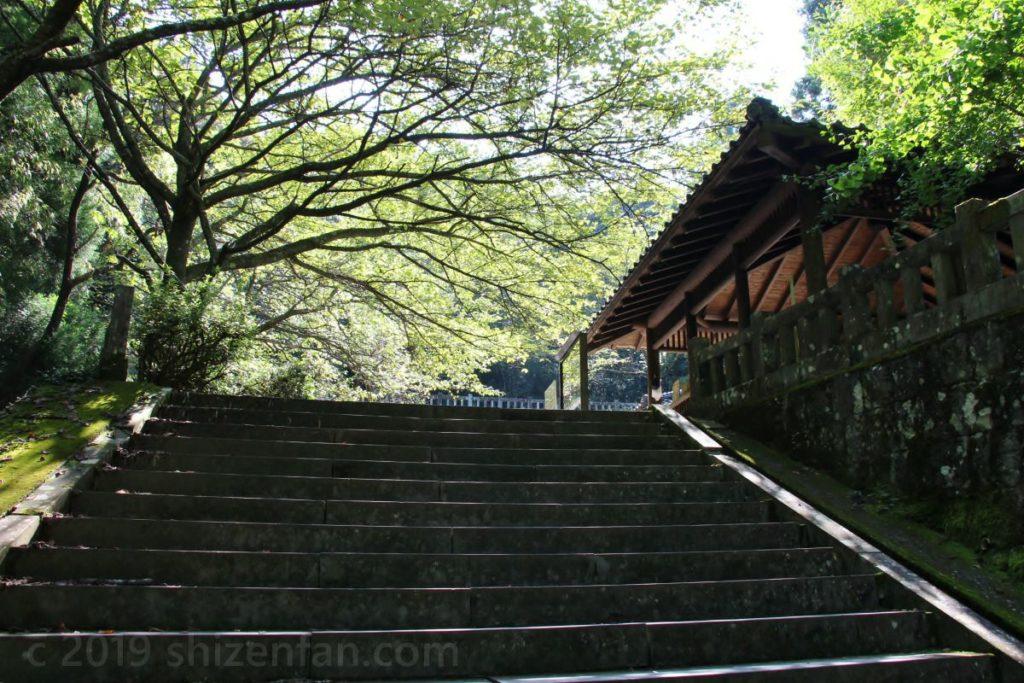 日本一の石段(釈迦院御坂遊歩道)200段目付近