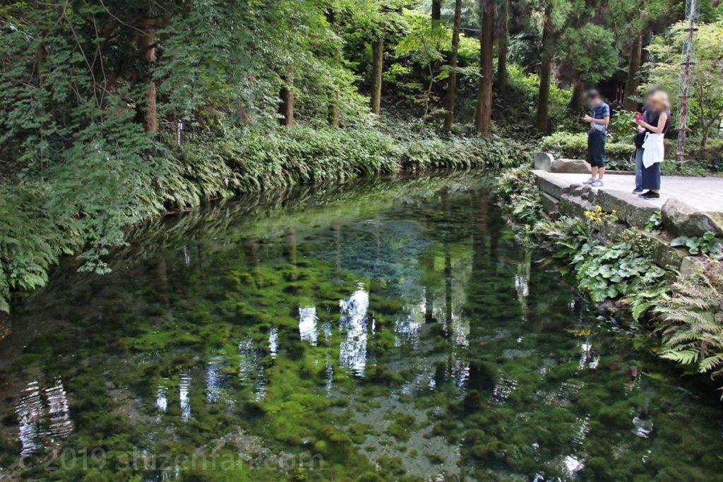 白川水源の全景