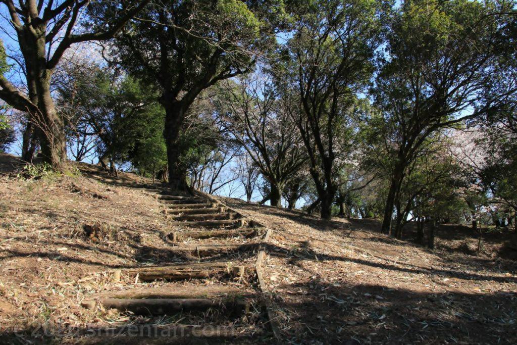 田原坂公園・自然の森内の散策路