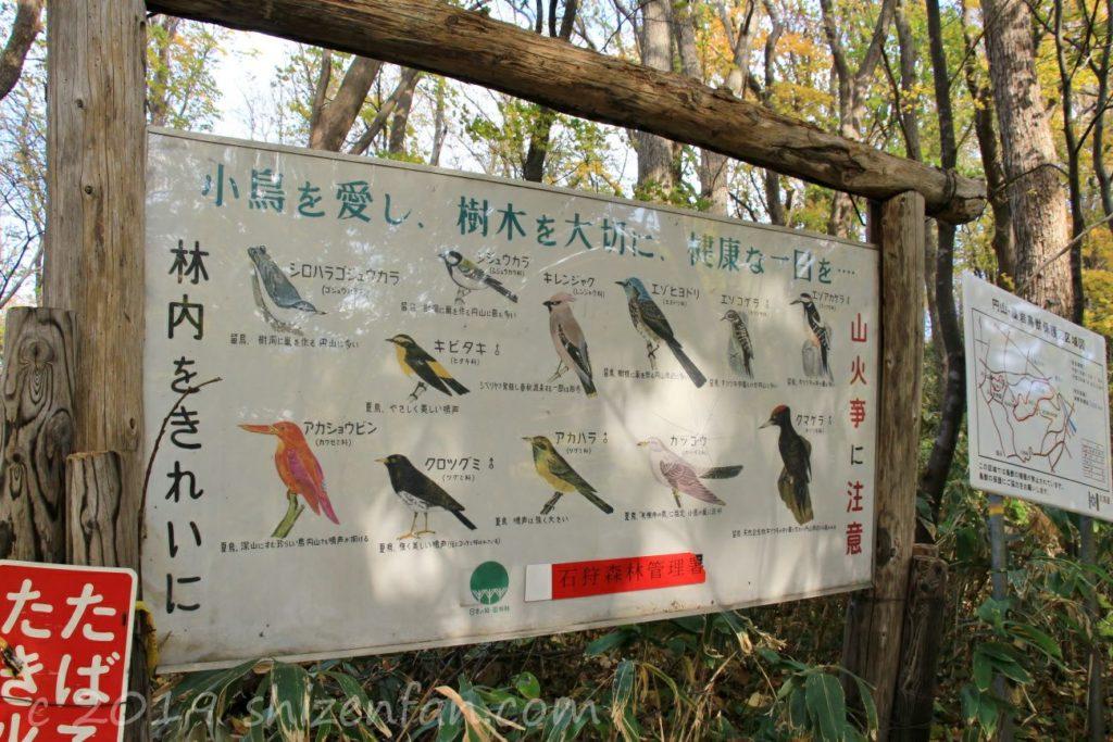 秋の札幌円山原始林、野鳥の看板
