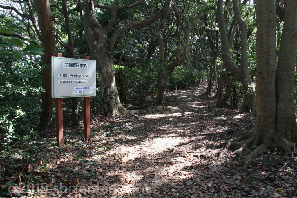 能古島 思索の森入口の様子