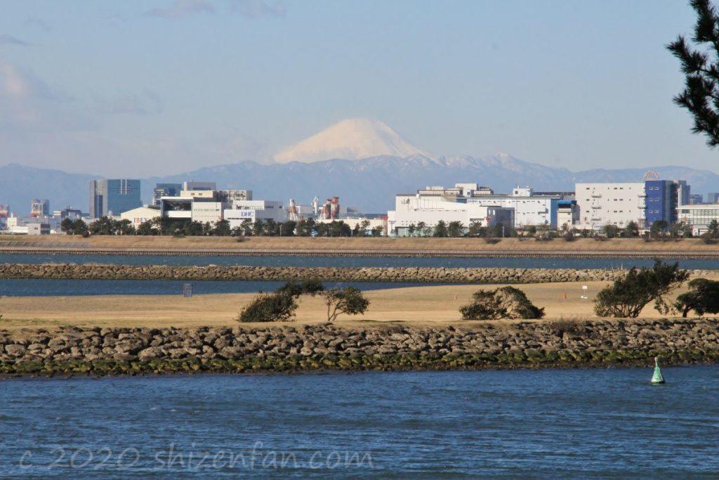 丹沢山地と富士山(2020.2.6葛西臨海公園にて撮影)