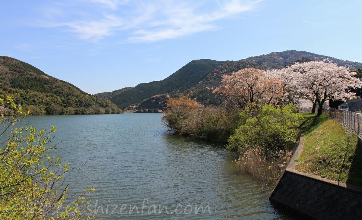 春の内日第一貯水池