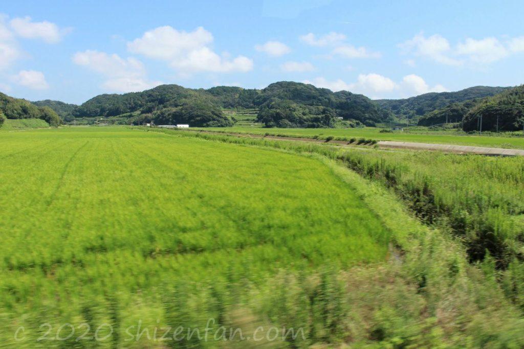 壱岐バスツアー中の車窓からの景色(田園風景)
