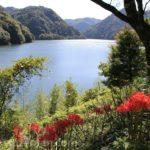 日田市大山町・松原ダム(梅林湖)展望台からの眺めと彼岸花