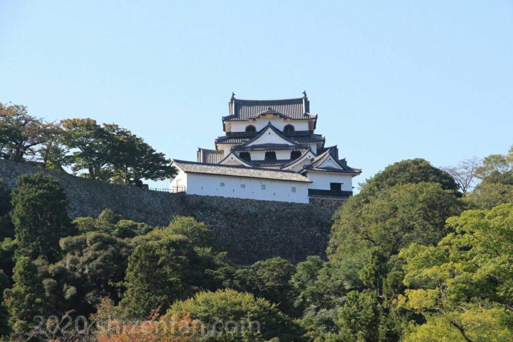玄宮園の中から見る彦根城