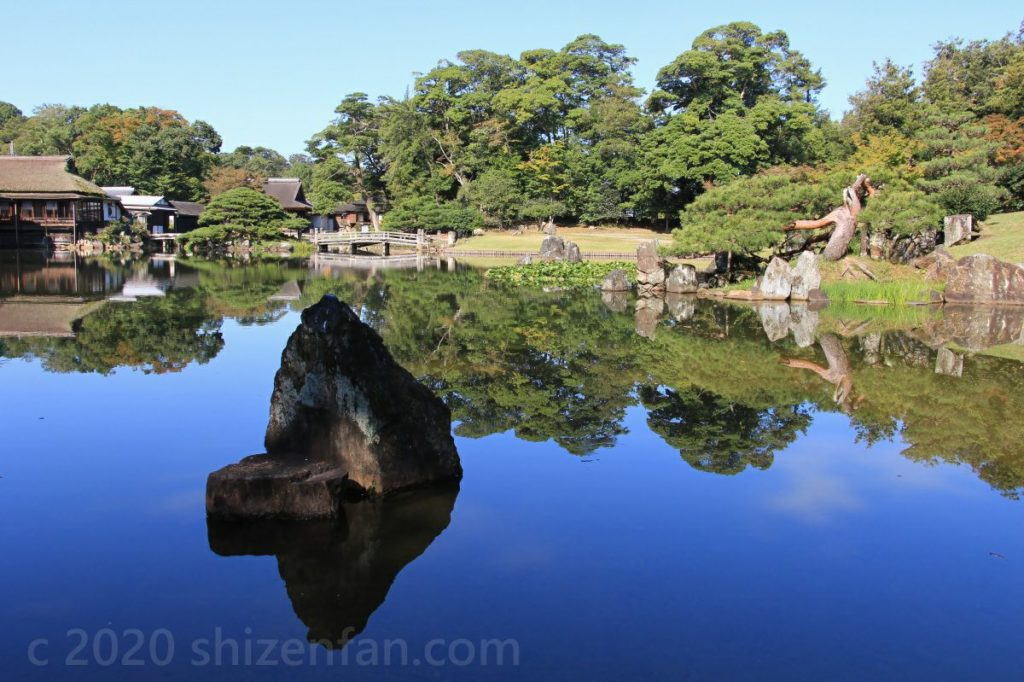 木々を映し出す鏡のような彦根・玄宮園の池