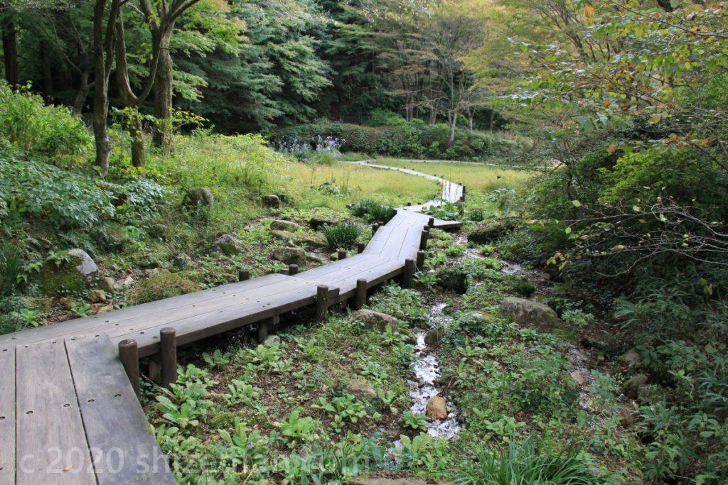 六甲高山植物園内の木道