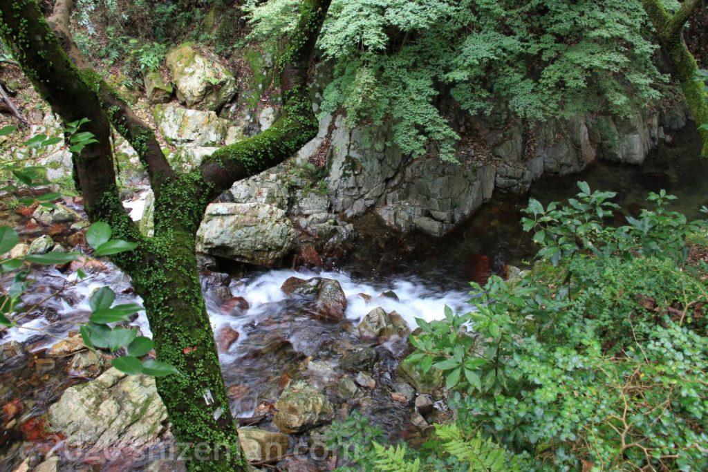 箕面公園内、箕面川の渓流
