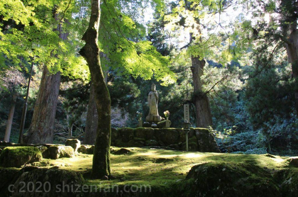 大本山永平寺参道の青もみじと如来像