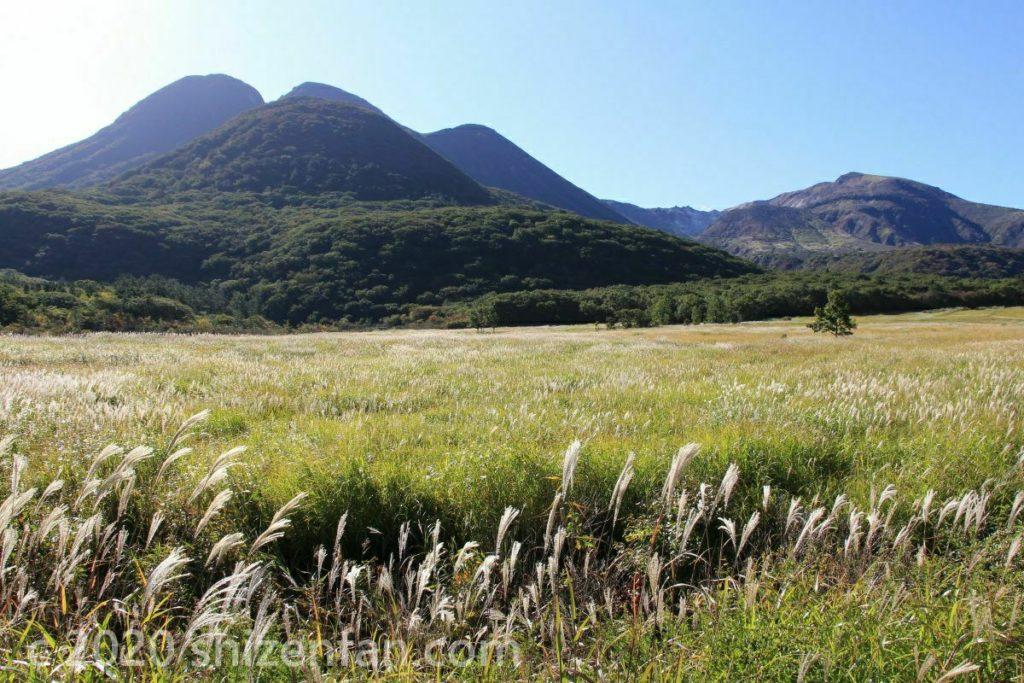秋のくじゅう・タデ原湿原と指山