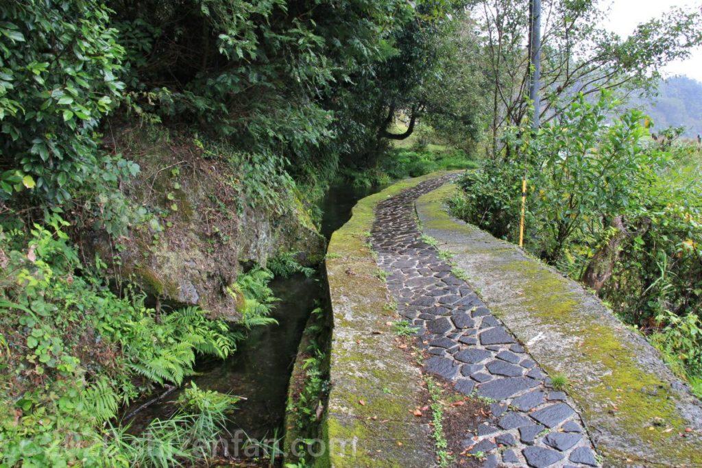 長小野塩井湧水(竹田湧水群)石畳の道