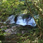 滑床渓谷 木々の間からのぞく滝