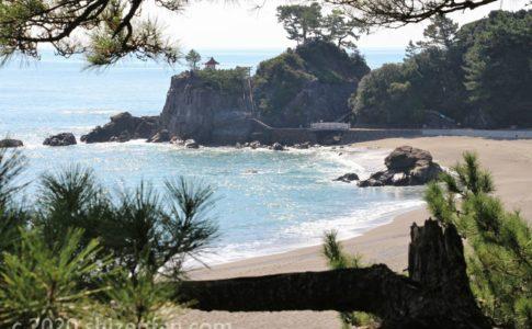 松の枝越しの桂浜