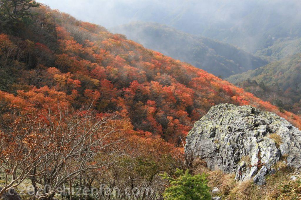 徳島・剣山 斜面の岩と真っ赤な紅葉